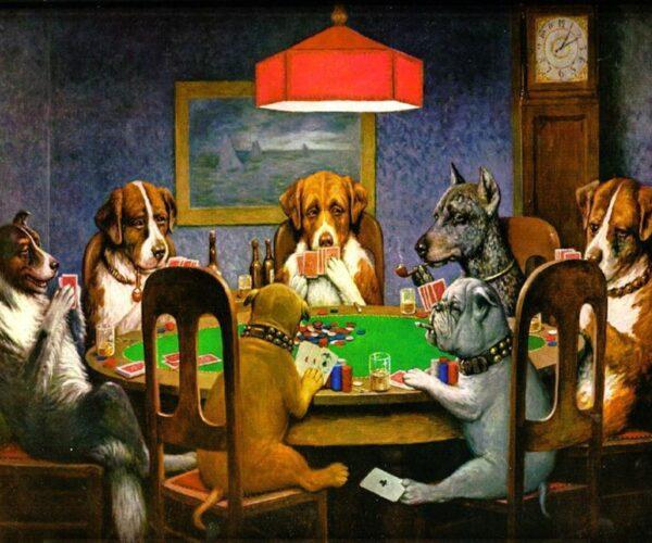 Jakie kasyno online wybrałby Twój pies